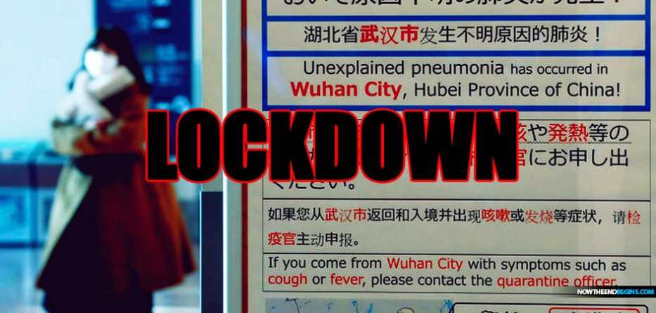 """The Lockdown: One Month in Wuhan"" [2020]"