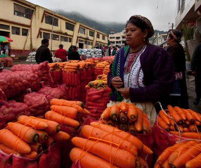 Transformasi Almolonga Guatemala
